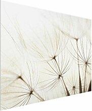 Bilderwelten Glasbild - Sanfte Gräser - Quer 3:4