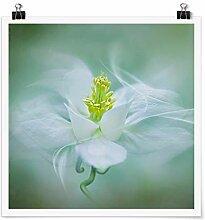 Bilderwelten Poster Galerieprint Kunstdruck
