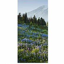 Bilderwelten Raumteiler Bergwiese mit Blumen vor