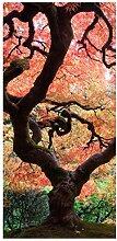 Bilderwelten Raumteiler Japanischer Garten