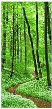 Bilderwelten Raumteiler Romantischer Waldweg