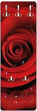 Bilderwelten Rosen Garderobe Rote Rose mit