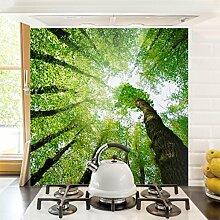 Bilderwelten Spritzschutz Glas - Bäume des Lebens