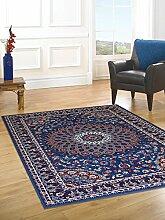 billige Teppich mit persischen Design Klassisch Teppich hellblau ROYAL SHIRAZ 2082-LIGHT BLUE 140x210