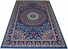 billige Teppich mit persischen Design Klassisch Teppich hellblau ROYAL SHIRAZ 2082-LIGHT BLUE 200x300