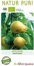 Bio Apfel-Birnenbaum 'Nashi Kosui' im 7,5L