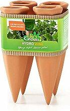 Bio Green Pflanzen Bewässerung Wine Tonkegel,