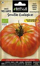 Bio Samen - Grosse Rosa Tomaten Tres Cantos (85 Samen - Bio)