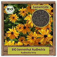 BIO Sonnenhut Samen Sorte Rudbeckia (Rudbeckia