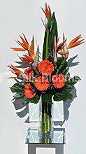 Bird Of Paradise Flower und Orange Fresh Touch Gerbera floral Tisch Arrangemen