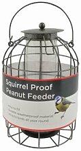 Bird Peanut Futterhaus Eichhörnchen Proof Wild