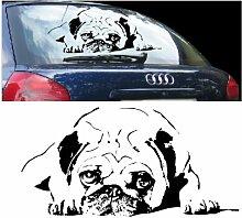 blattwerk-design KFZ Aufkleber Tiermotive - Hundekopf- Hund, Dog, Mops M070 Schwarz