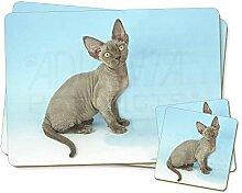 Blau Grau Devon Rex Kätzchen Twin 2x Platzsets
