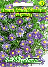 Blaues Gänseblümchen Brachycome iberidifolia