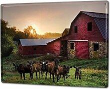 Blechschild XXL Küche Kühe auf Weide