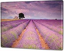 Blechschild XXL Küche Lavendelfeld
