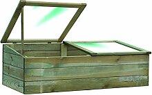 Blinky 7972310 Holz-Gewächshaus mit Doppelöffnung