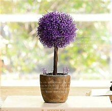 Bloom Green Co. 100 Stück Lavendel Bonsai Kraut