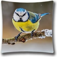 Blue Yellow Bird Standard Size Design Square Pillowcase- Custom Pillowcase with Invisible Zipper in 18x18 inches (Twin sides) AnasaC29603