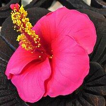 Blüten Kunstblumen Hibiskus rot