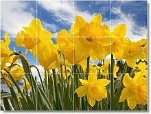 Blume Bild Badezimmer Fliesen Wand F316. 45,7x 61cm mit (12) 6x 6Keramik Fliesen.