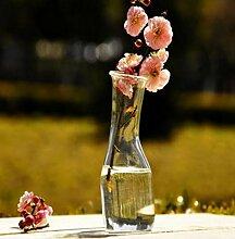 Blume Hydrokultur Pflanzen Regal Glas Flasche Vase