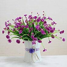 Blumen der kleinen Blume Pflanzen Sukkulenten falsche Kombination Topf Inneneinrichtung Dekoration Wohnungseinrichtung, volle Sky Star violett-rote Flasche