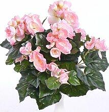 Blumen Grabdeko Stecker Begonienpflanze rosa.