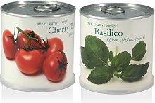 Blumen in der Dose Geschenk Set Cherry Tomato -
