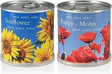 Blumen in der Dose Geschenk Set - Sonnenblume -