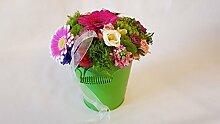Blumengesteck frisch | TOP Qualität und sehr
