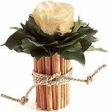 Blumengesteck mit Zimtbecher und 1 Rose