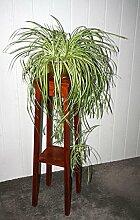 Blumenhocker kirschbaumfarben Blumentisch 100cm