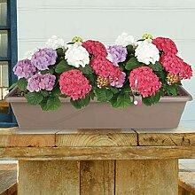 Blumenkasten Taupe 79cm mit Bewässerung