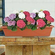 Blumenkasten Terrakotta 79cm Balkonkasten