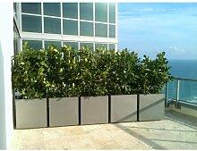 Blumenkübel West Branch aus Fiberglas Zipcode