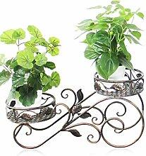 Blumenregal Eisen-Boden-Typ 2-Schicht-Blumentopf-Rack Europäische einfache Innen-und Außenbereich Pflanzen Bonsai Regale ( farbe : Messing , größe : 54cm*27cm )