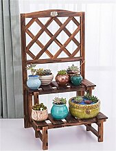 Blumenregale Blumentopf Regal, einfach 2 Schichten Holz Blumentopf Regal, Indoor Balkon Kleine Blume Rack Pflanze Regal ( Farbe : Carbonized Color )