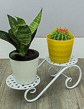 Blumenständer Kreative Desktop Succulent Pflanzen Kleine Blume Rack Office Multifunktions-Mini-Regal Windowsill Eintritt Topfpflanzen Flower Rack Pflanzentreppe ( Farbe : B , größe : 30*6*11.5cm )