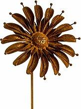 Blumenstecker Gänseblümchen, Edelrost, Ø 22cm