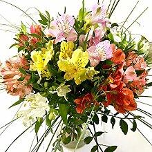 Blumenstrauß Alstromerien