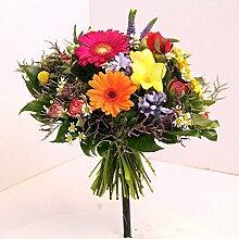Blumenstrauß Farbkasten bunte frische Blumen