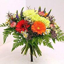 Blumenstrauß Farbspektrum Size 25 Euro