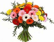 Blumenstrauß Hey Pippi Langstrumpf Größe 30 Euro