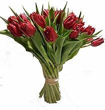 Blumenstrauß mit 30 roten Tulpen | blumenstrauß