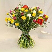 Blumenstrauß Ranunkeln im Trio Size 55 Euro
