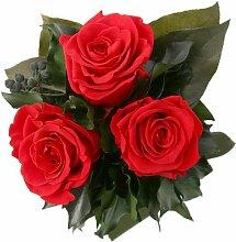 Blumenstrauss Rosenstrauss mit 3 konservierte