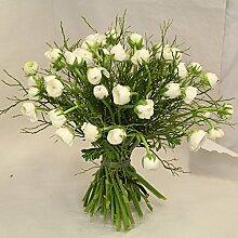 Blumenstrauß Solist aus Ranunkeln Size 55 Euro