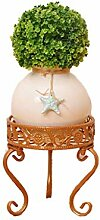 Blumentopf mehrschichtiger Blumenständer
