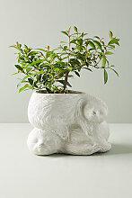 Blumentopf mit Faultierdesign - Grey